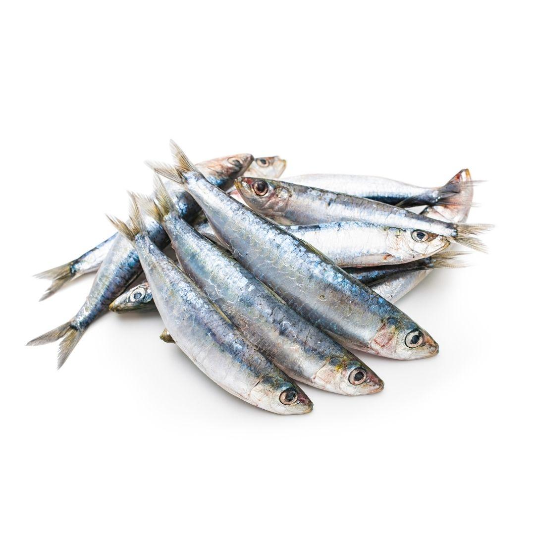 1/2 de sardinas