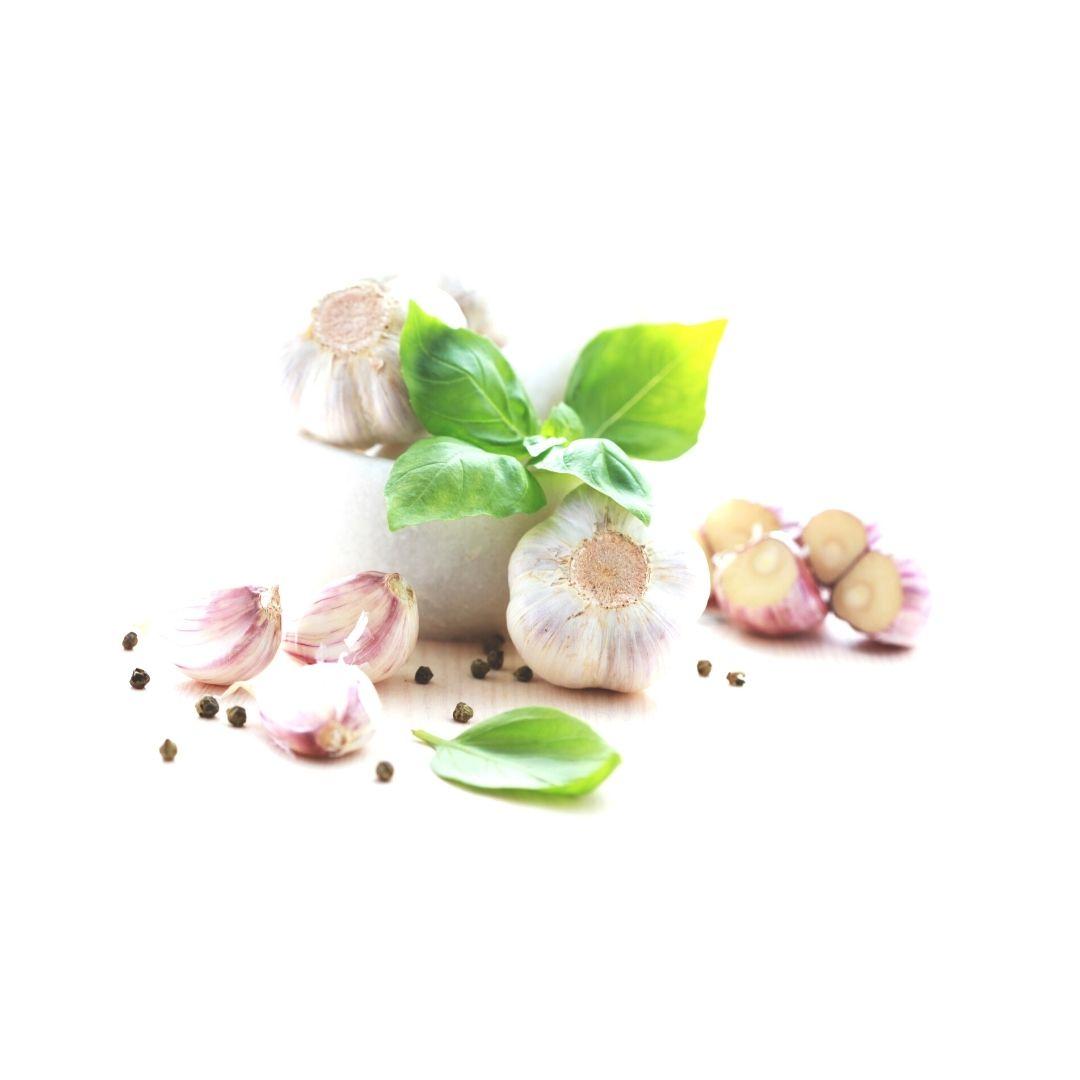 C/s de ajo fresco y albahaca